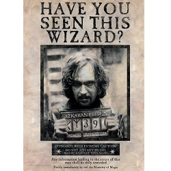 Harry Potter (Sirius Black) MightyPrint Wall Art