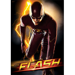 "Barry Allen may be new to the hero business, but that he is definitely extraordinary. Known as ""The Flash"" he fights to protects his city to the best of his abilities. Bring home the Flash with this unique MightyPrint Wall Art."