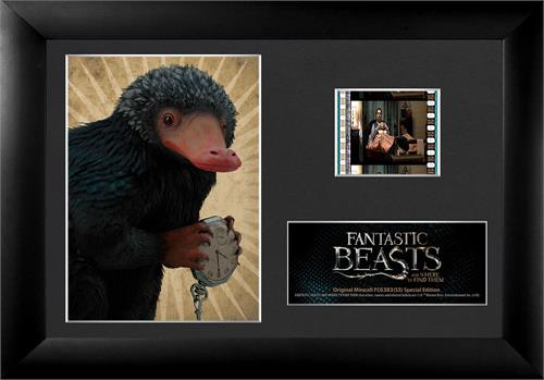 Hide your shiny valuables, the Niffler is out and about!  Show how much you love the Niffler with this framed FilmCell presentation from FANTASTIC BEASTS AND WHERE TO FIND THEM in this special edition collectible that contains a real clip of film