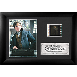 This FilmCells™ Presentation features Newt Scamander in his magical suitcase as he appears in Fantastic Beasts: The Crimes of Grindelwald. Included on the easel-backed presentation is a high-quality image, a special edition card, and one clip of film.