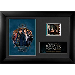 Newt, Porpentina, Queenie, and Jacob are all here! Show how much you love the whole gang with this framed FilmCell presentation from FANTASTIC BEASTS AND WHERE TO FIND THEM in this special edition collectible that contains a real clip of film
