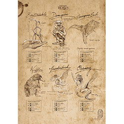 Keep this MightyPrint™ Wall Art handy in case you come across a beast you need to identify. This durable, detailed wall art features the field notes of Newt Scamander from Fantastic Beasts and Where to Find Them™.