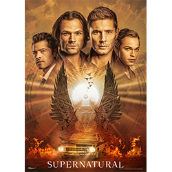 "This 17"" x 24"" MightyPrint Wall Art features Sam, Dean, Jack Kline and Castiel along with the phrase ""The End is Nigh"", symbolizing the final season of Supernatural. Within this wall art are many Easter Eggs – how many hidden symbols can you find?"