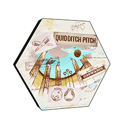 "This officially licensed Harry Potter 11.5"" X 10"" hexagon shaped décor displays a watercolor collage featuring artwork of the Quidditch Pitch, hoops, the Golden Snitch and more!"