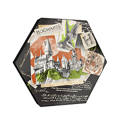"This 11.5"" X 10"" hexagon shaped décor displays a watercolor collage featuring the artwork of Hogwarts, the Hogwarts crest and more! The"