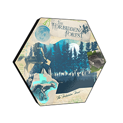 "This officially licensed Harry Potter 11.5"" X 10"" hexagon shaped décor displays a watercolor collage of memorable moments and creatures from the Forbidden Forest."