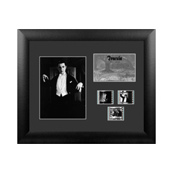 Take a step back into the era of classic horror with this FilmCells presentation. This special edition framed collectible features Bela Lugosi as Dracula, a descriptive plaque, and contains three clips of real 35m film from the movie.